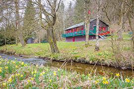 Locations au printemps