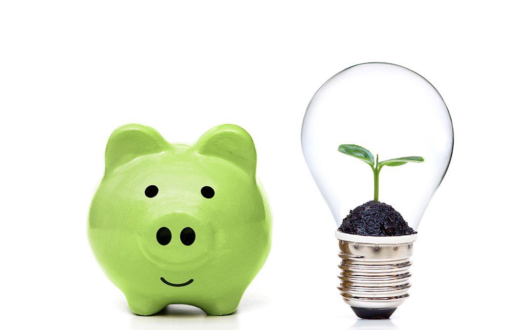 Comment combiner économie et écologie?