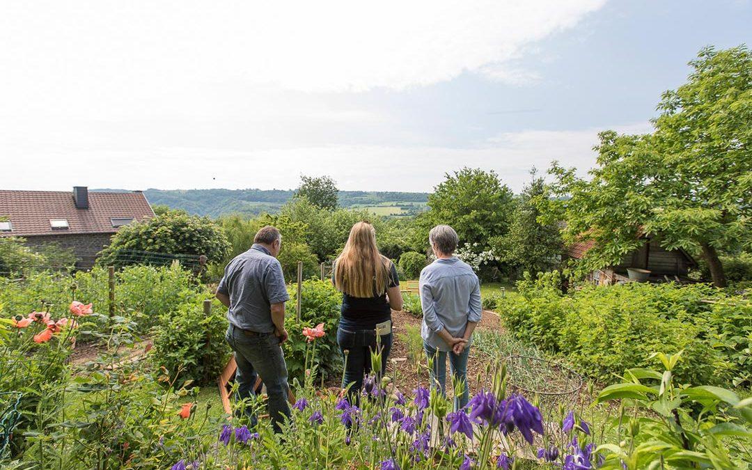 Aménager un jardin écologique : trucs et astuces