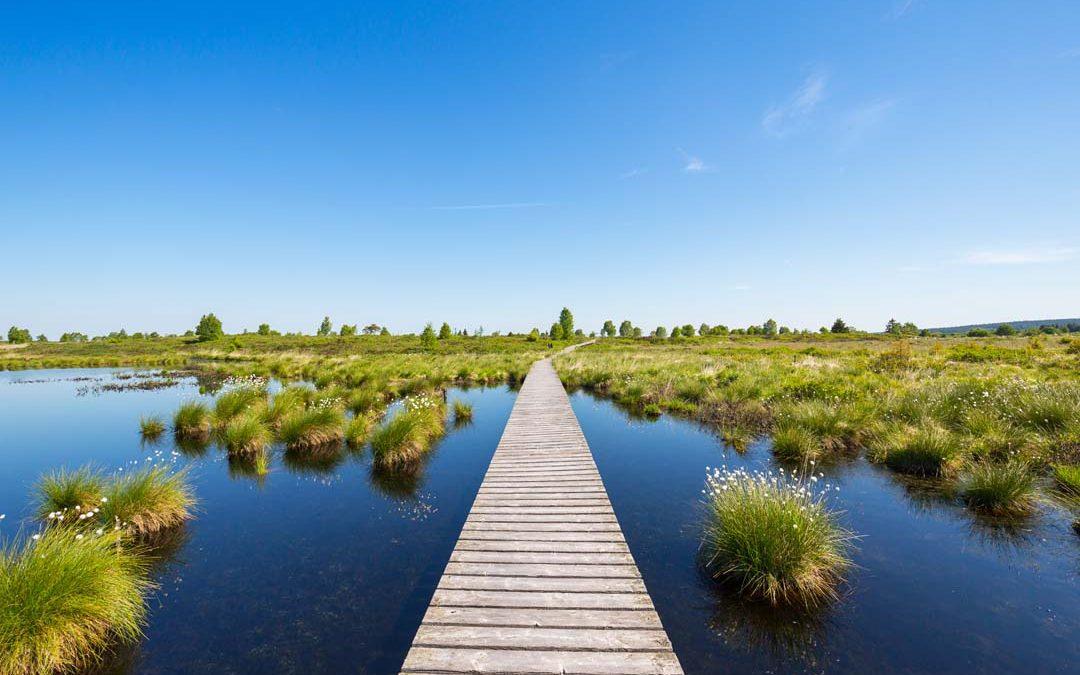 L'écotourisme : à quel label se vouer ?