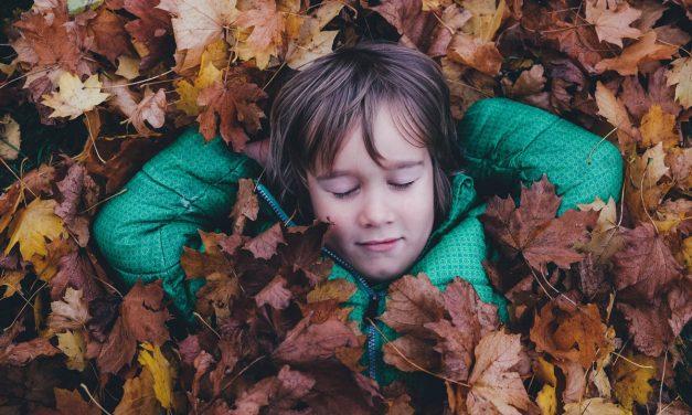Comment apprendre aux enfants à respecter la nature ?
