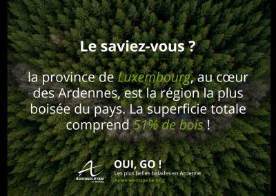 luxembourg-bois