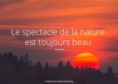 spectacle-nature