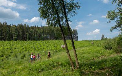 Le VTT électrique, une manière d'arpenter l'Ardenne sans efforts