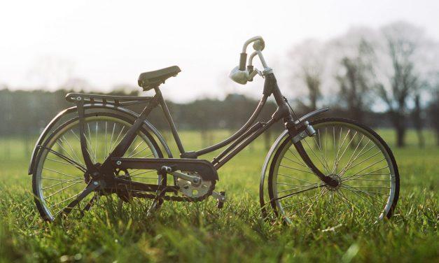 Détente et vélo chez Patrick !