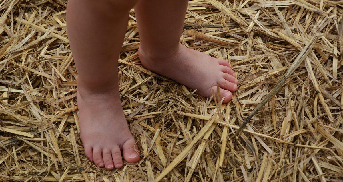 Une balade à pieds nus insolite avec vos enfants