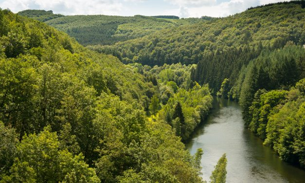 7 raisons qui font de l'Ardenne une destination inoubliable