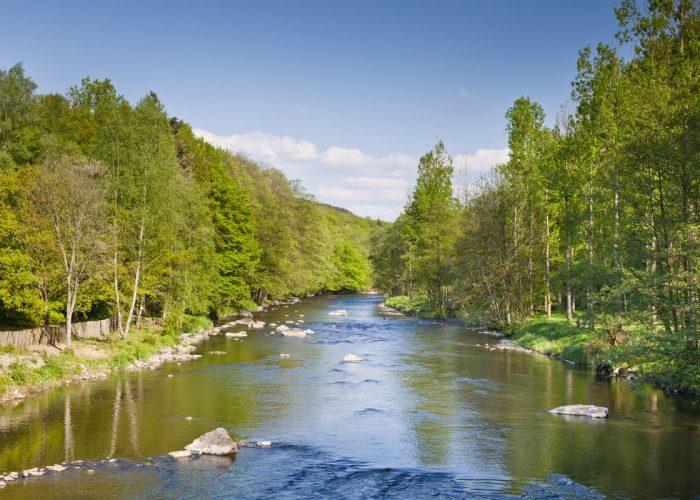 paysage en Ardenne