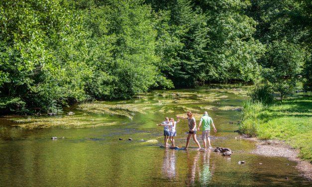 Baignade nature et en plein air : découvrez nos spots préférés en Ardenne