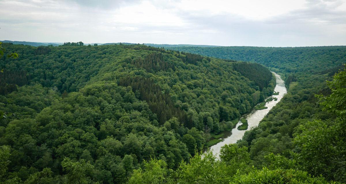 Les beaux panoramas de l'Ardenne qui valent la peine de grimper