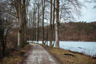 Balade en forêt à Spa, autour du lac de Warfaaz
