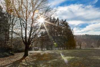 Gîte de charme pour 8 personnes à Momignies au coeur d'une forêt classée