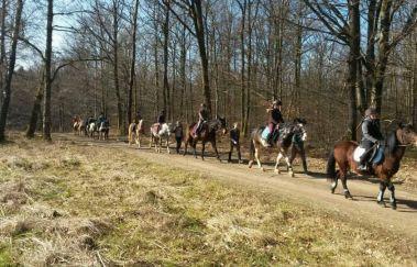 Ecurie des îles-Equitation à Saint-Hubert