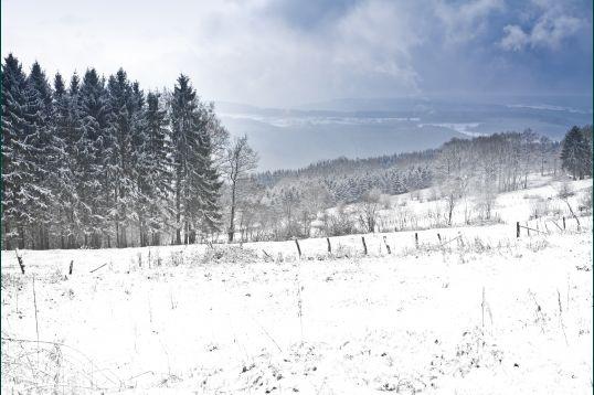 Pistes De Ski De La Baraque Fraiture A Vielsalm Luges Ardenne Belgique