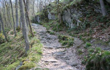 Balade pédestre: Hérou-Promenades pédestres balisées à Province du Luxembourg