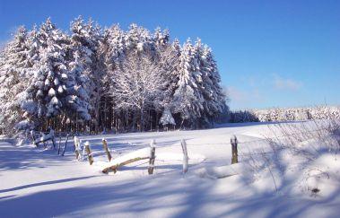 Pistes de ski de Neu Perlé-Ski de fond à Province du Luxembourg