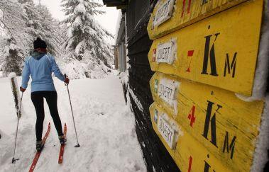 Pistes de ski de fond de Saint-Hubert-Ski de fond à Province du Luxembourg