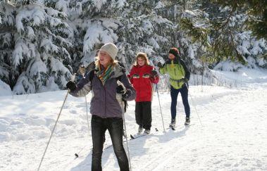 Pistes de ski de la Baraque Michel-Ski de fond à Province de Liège