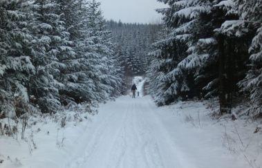 Pistes de ski de la Croix-Scaille-Ski de fond à Province du Luxembourg