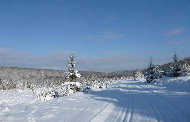 Cours de ski de fond en Ardenne-Sports et loisirs à